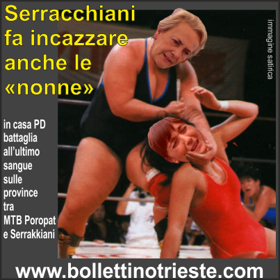 20140113_poropat vs serracchiani