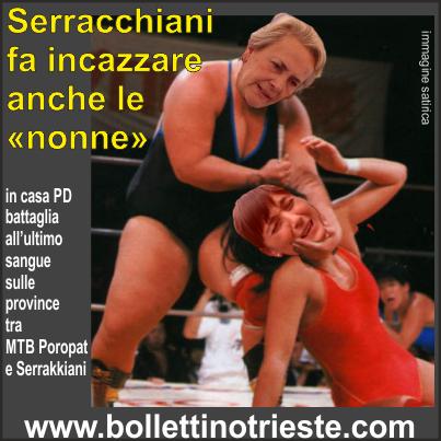 20140113_poropat vs serracchiani