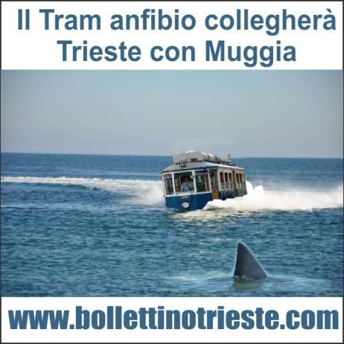 20140206_tram anfibio trieste