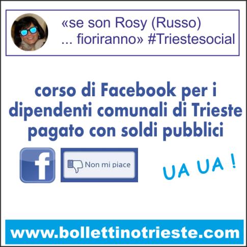 20140228_corso facebook trieste